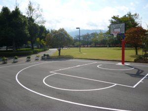 屋外バスケットボール用ゴールの写真1