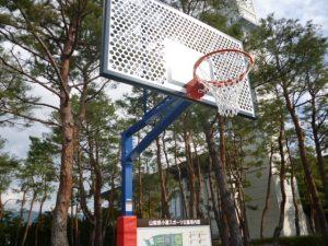 屋外バスケットボール用ゴールの写真2